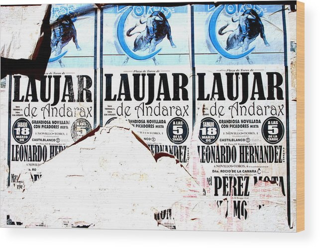 Photographer Wood Print featuring the photograph Laujar Fight by Jez C Self