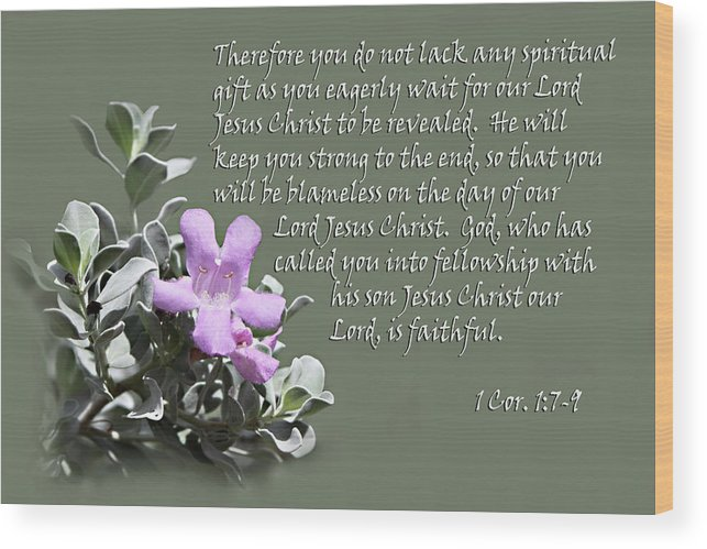 Wood Print featuring the photograph Lavender Sage Blossom I Cor. 1 V 7-9 by Linda Phelps