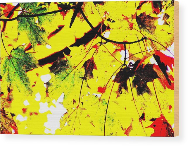 Lemonade Wood Print featuring the photograph Lemonade by Ed Smith