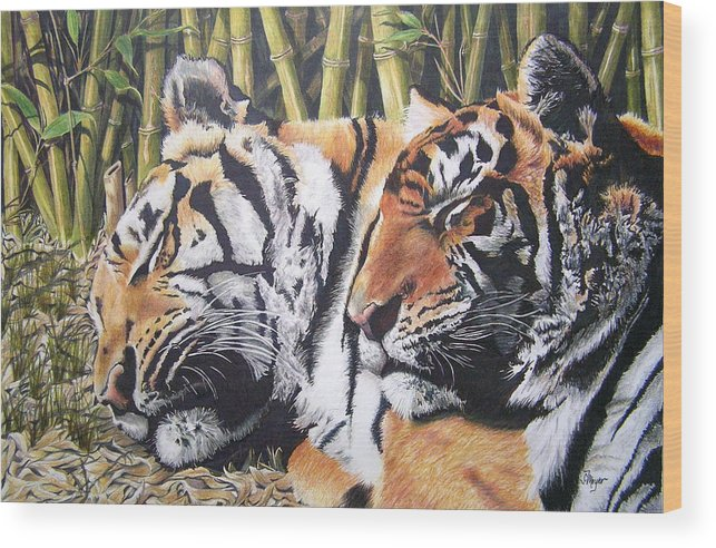 Animals Wood Print featuring the drawing Let Sleeping Tigers Lie by Susan Moyer
