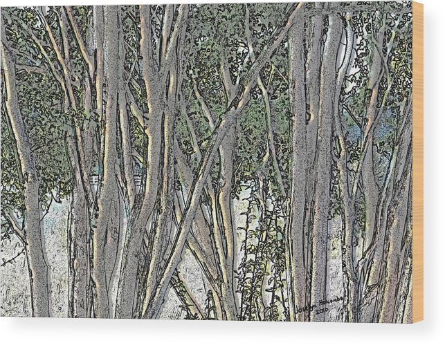 Trees Wood Print featuring the digital art Light Through The Crepe Myrtles by Joselyn Holcombe