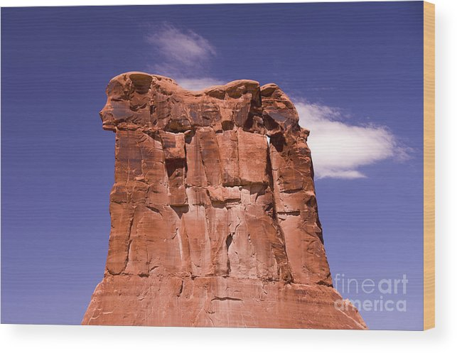 Rock Wood Print featuring the photograph Lions Head by Louise Magno