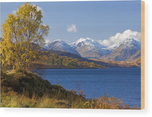 Scotland Wood Print featuring the photograph Loch Katrine And The Arrochar Alps by John McKinlay