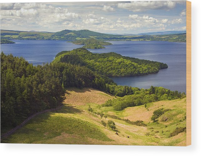 Scotland Wood Print featuring the photograph Loch Lomond From Conic Hill by John McKinlay