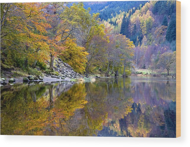 Scotland Wood Print featuring the photograph Loch Lubnaig In Autumn by John McKinlay
