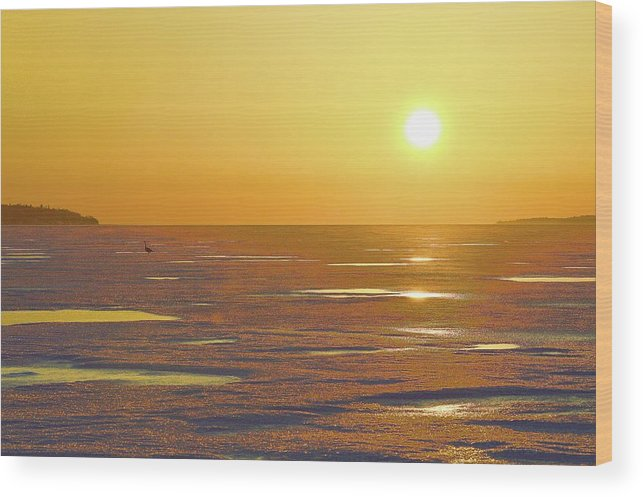 Abstract Wood Print featuring the digital art Lone Goose At Sunrise by Lyle Crump