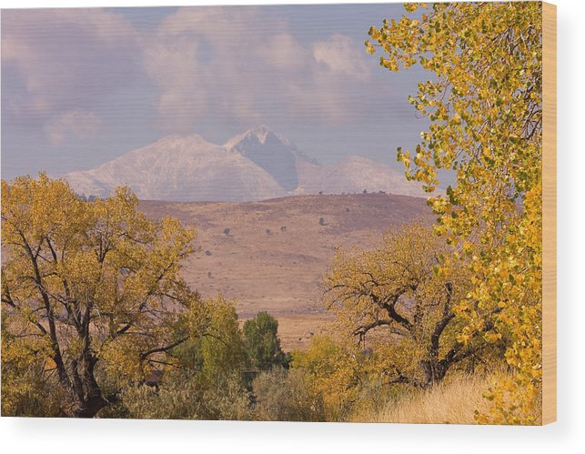 Twin Peaks Wood Print featuring the photograph Longs Peak Diamond Autumn Shadow by James BO Insogna