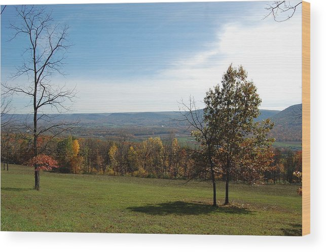 Fields Wood Print featuring the photograph Looking At Fall Colors In The Field by Richard Botts