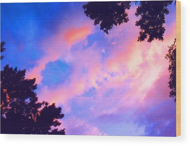 Sky Wood Print featuring the photograph Looking Up 2 by Lyle Crump