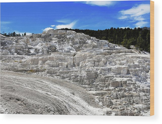 Yellowstone Wood Print featuring the photograph Mammoth Hot Springs2 by Hughes Country Roads Photography