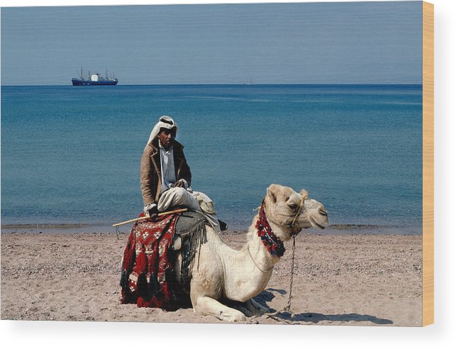 Dromedary Wood Print featuring the photograph Man With Camel At Red Sea by Carl Purcell