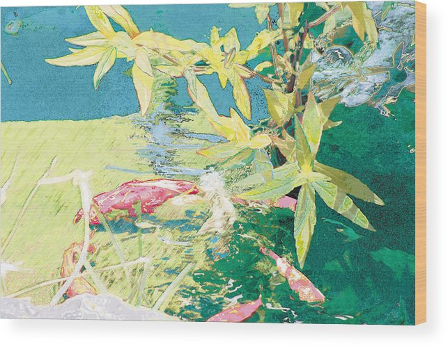 Koi Wood Print featuring the photograph Marry-go-round Kio In The Spring-may Day by Judy Loper