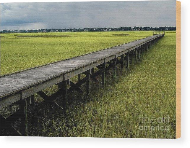 Marsh Wood Print featuring the photograph Marshland Boardwalk by Neil Doren
