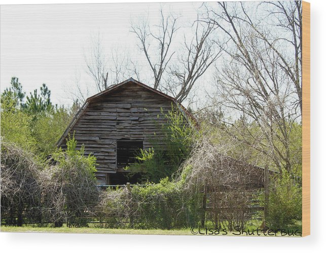 Barn Wood Print featuring the photograph Mcdonald 3 by Lisa Johnston