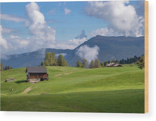 Meadow In Alpe Di Siusi Wood Print featuring the photograph Meadow In Alpe Di Siusi by Carolyn Derstine