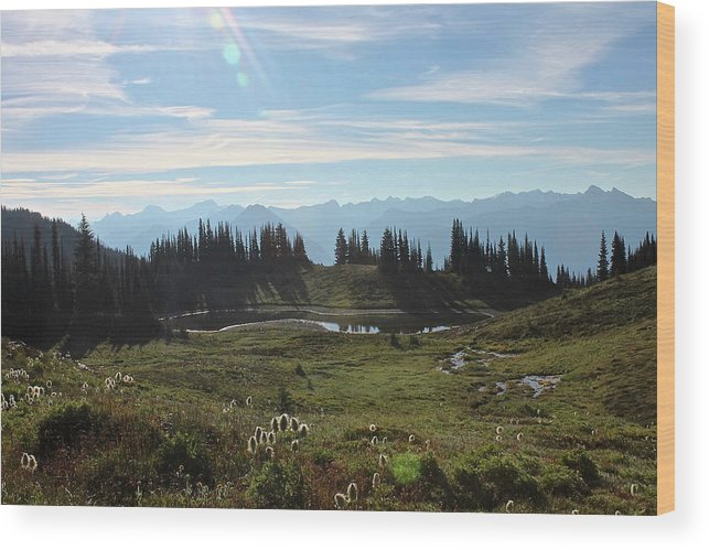 Mountain Wood Print featuring the photograph Meadow Mountain View by Cathie Douglas