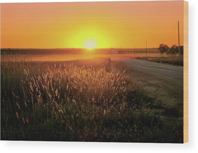 Sunset Wood Print featuring the photograph Midwest Sunset by Nikolyn McDonald