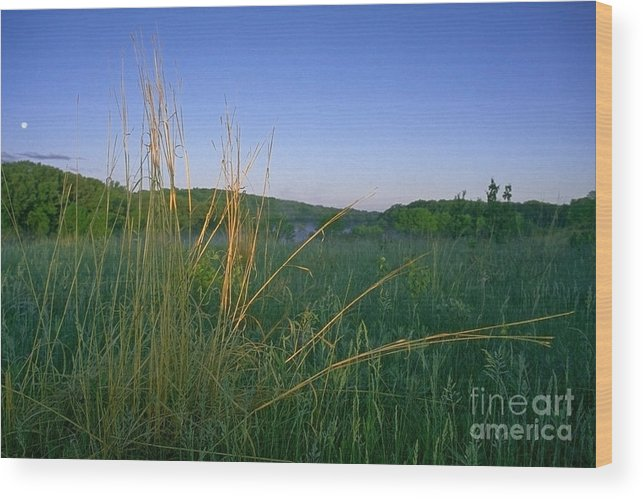 Prairie Wood Print featuring the photograph Minnesota Prairie Moon Rise by Sven Brogren