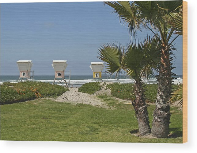Beach Wood Print featuring the photograph Mission Beach Shelters by Margie Wildblood
