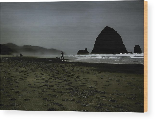 Ccannon Beach Wood Print featuring the photograph Mist At Cannon Beach by David Patterson