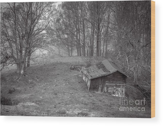 Pasture Field Wood Print featuring the photograph Mist Field And Barn by Thomas R Fletcher