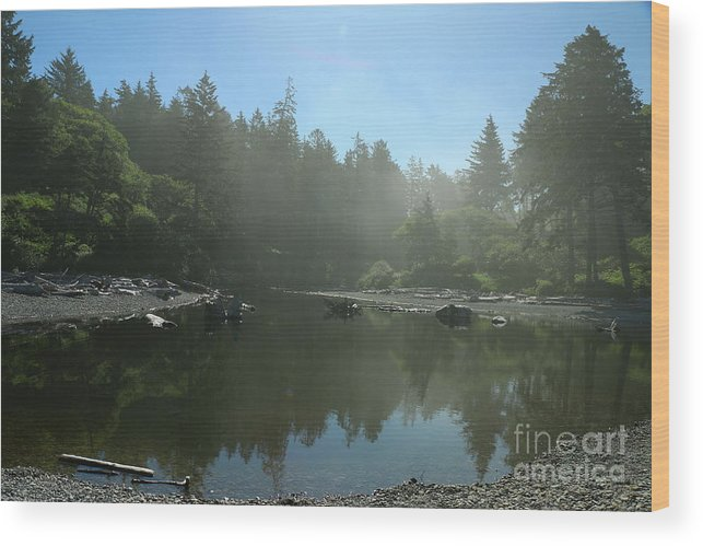 Beach Wood Print featuring the photograph Mist Over Ruby Beach by Christiane Schulze Art And Photography