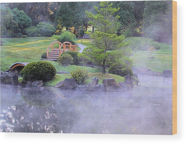 Mist Wood Print featuring the photograph Misty Garden by Gary Wilson