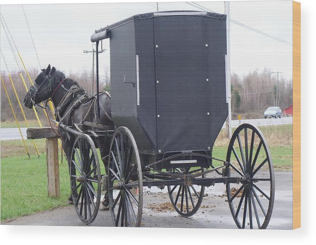 Amish Wood Print featuring the photograph Modern Amish Horse And Buggy by Rauno Joks