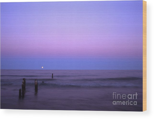 Moon Wood Print featuring the photograph Moonrise by Timothy Johnson