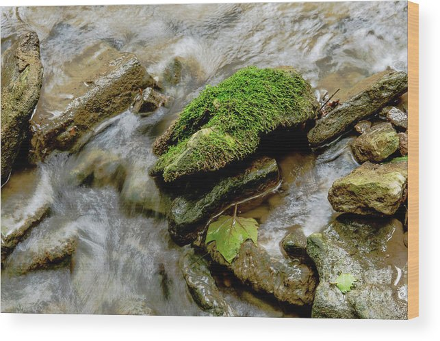 Stream Wood Print featuring the photograph Moss Covered Rock by Wesley Farnsworth
