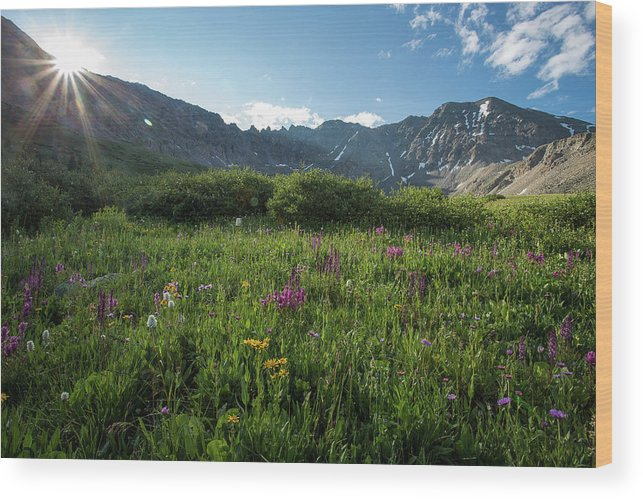 Mayflower Gulch Wood Print featuring the photograph Mountain Glory by Donald Poole