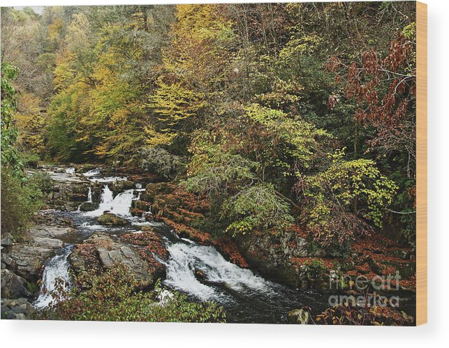Stream Wood Print featuring the photograph Mountain Stream by Rick Mann