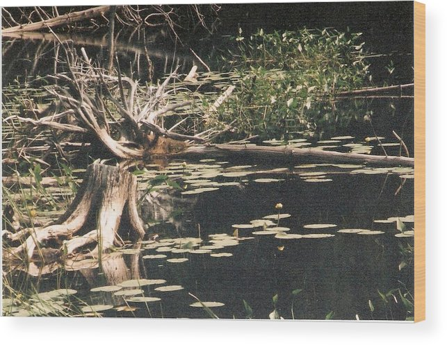 Lake Wood Print featuring the photograph Mud Lake Landscape - Photograph by Jackie Mueller-Jones
