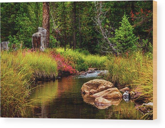 Murdock Basin Wood Print featuring the photograph Murdock Basin Autumn by TL Mair