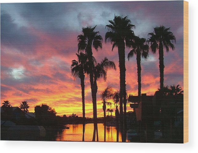 Sunset At The Islands Wood Print featuring the photograph My Backyard by Dan Hausel