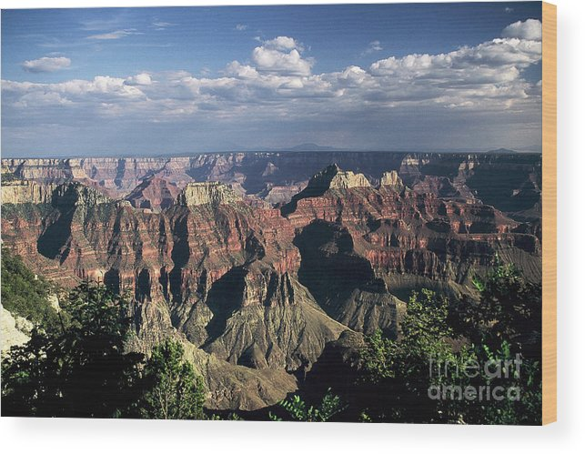 Grand Canyon; National Parks Wood Print featuring the photograph North Rim by Kathy McClure