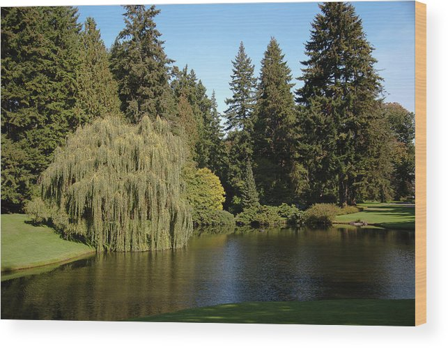 Garden Wood Print featuring the photograph Northwest Garden by Roger Mullenhour