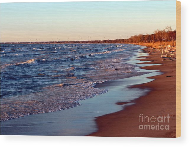 Grand Bend Wood Print featuring the photograph Not A Soul Grand Bend 7 by John Scatcherd