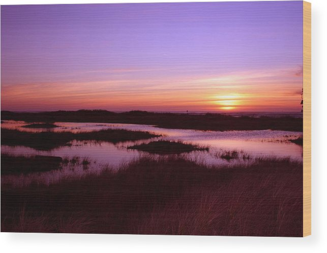 Sunsete Wood Print featuring the photograph Ocean Shores Sunset Ss 1003 by Mary Gaines