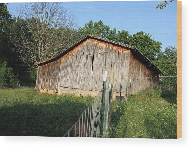 Early Morning On Farm Wood Print featuring the photograph Old Barn In Tennessee by Rachael Bliss