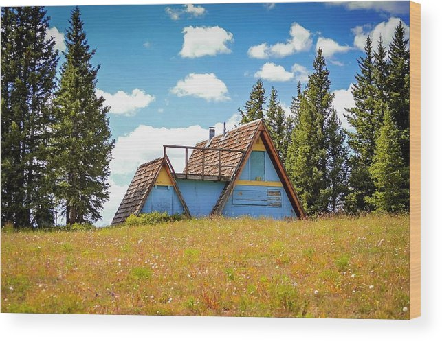 Cabin Wood Print featuring the photograph Old Cabin by Livia Pavelescu