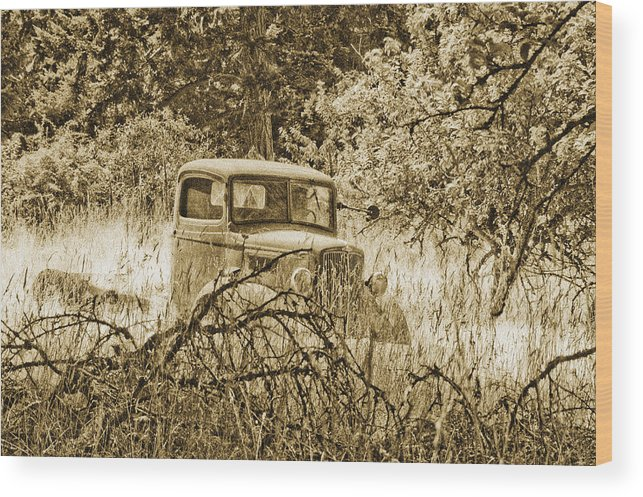 Vintage Wood Print featuring the photograph Old Truck by Linda McRae