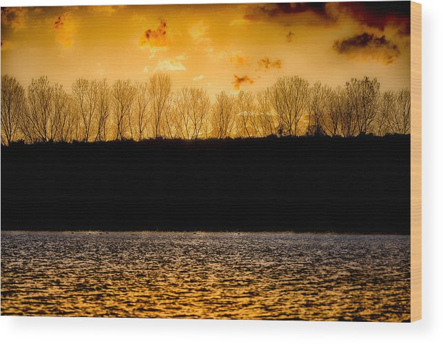 Fine Art Wood Print featuring the photograph On A Golden Lake by Darby Donaho