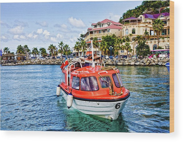 Anchorage Wood Print featuring the photograph Orange Lifeboats Across Colorful Bay by Darryl Brooks