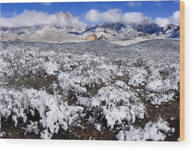 New Mexico Wood Print featuring the photograph Organ Mountains With Snow by Patrick Alexander