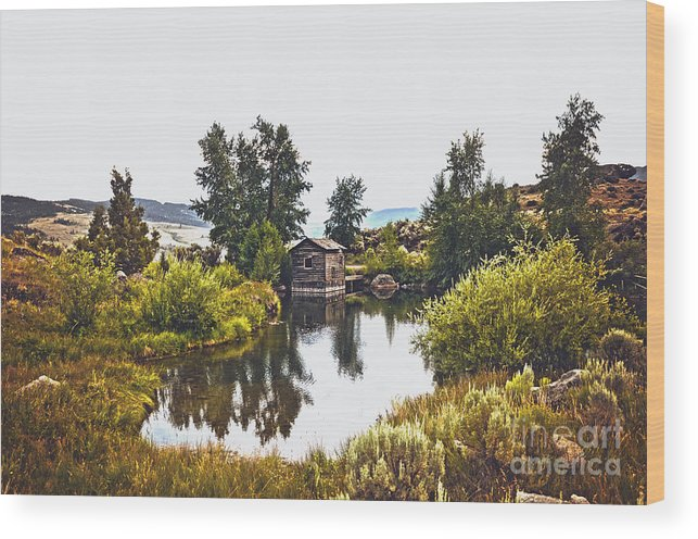 Abandon Wood Print featuring the photograph Out West by Rachel Barrett