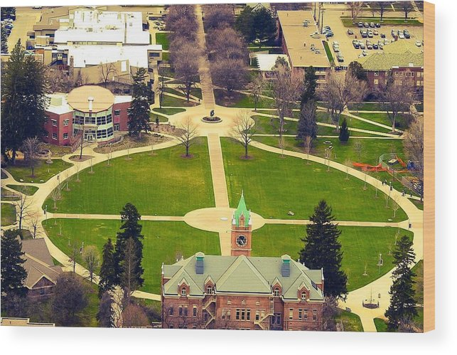 Wood Print featuring the photograph Oval At University Of Montana by Dan Hassett