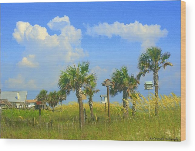 Beach Wood Print featuring the photograph Paradise by Sheri Bartoszek