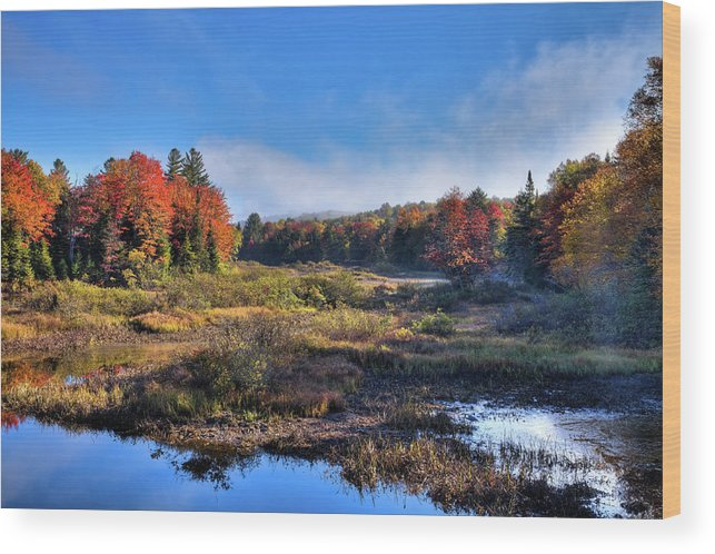 David Patterson Wood Print featuring the photograph Patches Of Fog At The Green Bridge by David Patterson