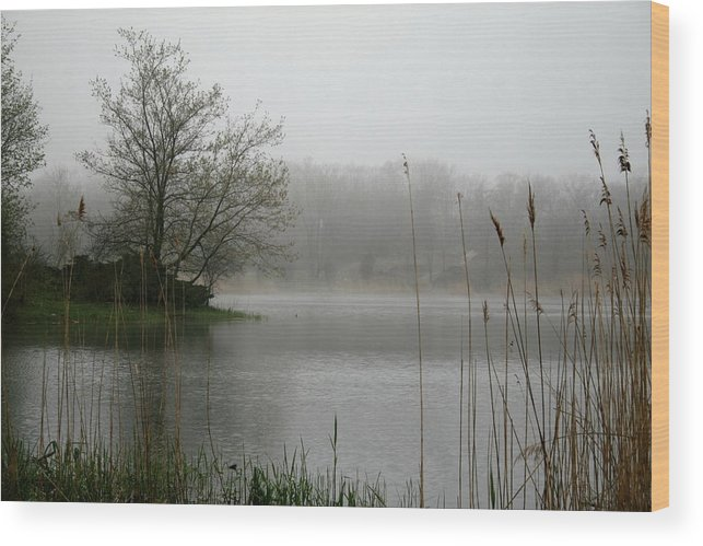 Landscape Wood Print featuring the photograph Peaceful Calm by Erika Lesnjak-Wenzel